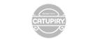 logo catupiry